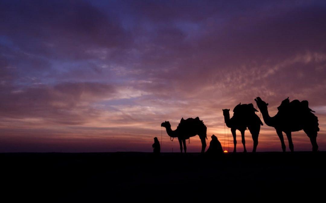 Emirati Arabi Uniti, come tutto ebbe inizio