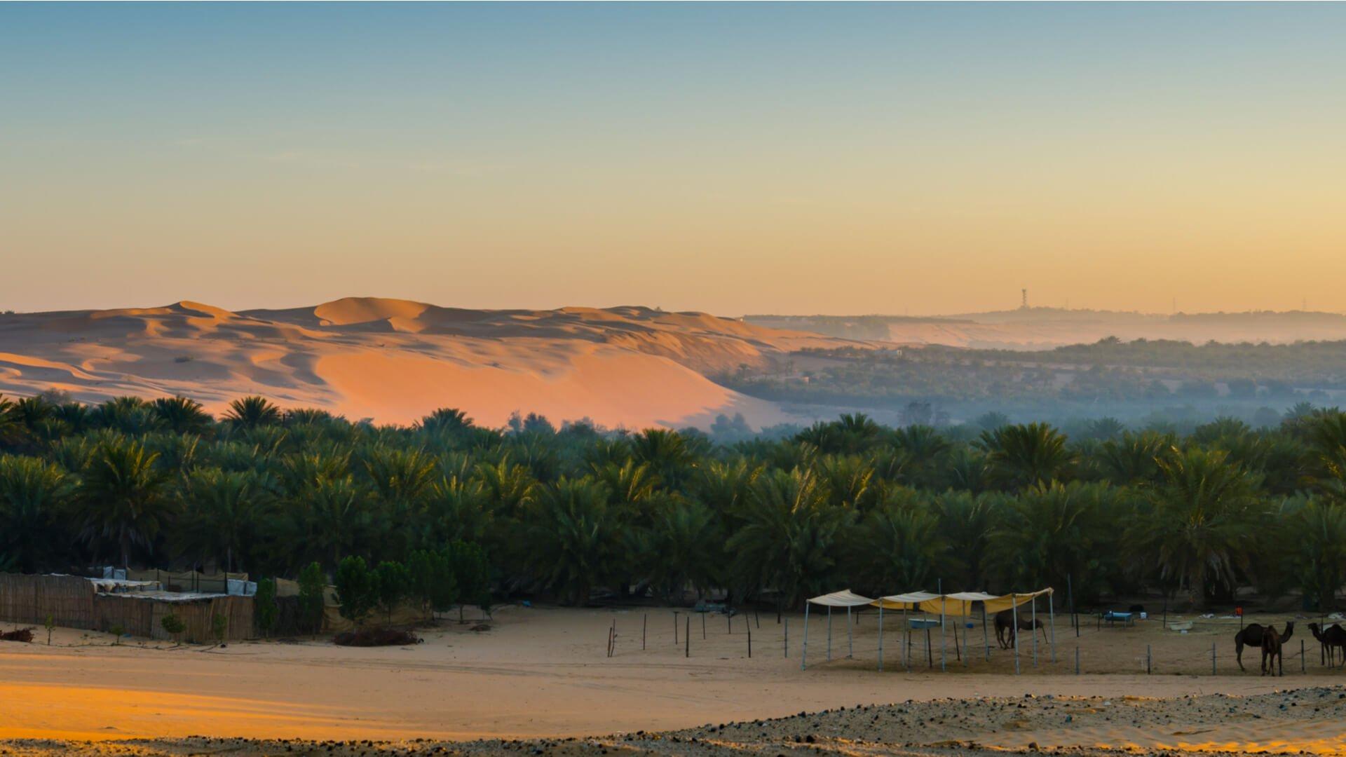 Liwa-Emirati Arabi Uniti