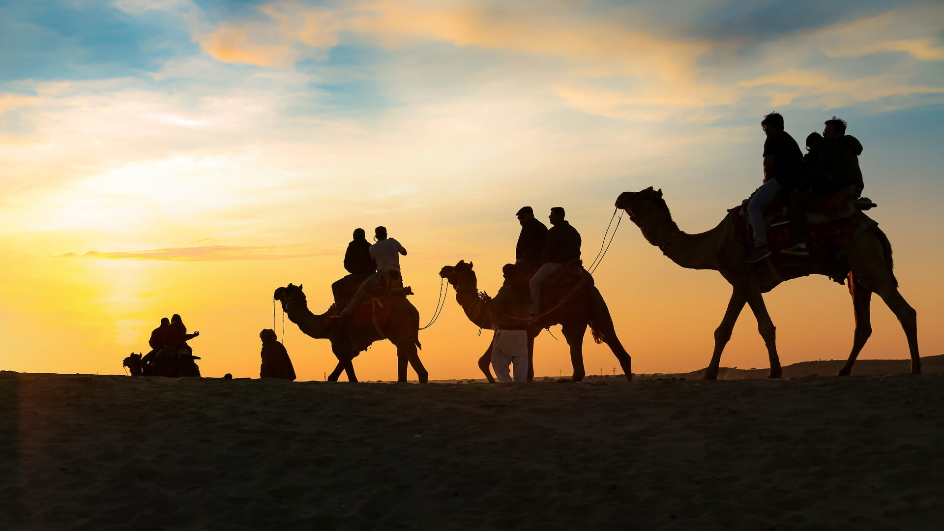 corsa dei cammelli