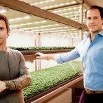 3 Insalatine-Luca-Travaglini-e-Daniele-Benatoff_co-founders-Planet-Farms